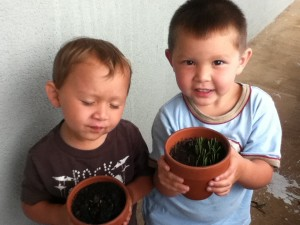 Boys See First Signs Of Plant's Growth